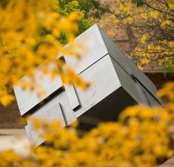 The Cube sculpture surrounded by yellow fall leaves