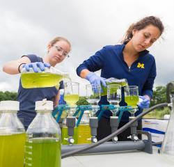 Student assisting a faculty member with lab work